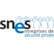 SNES logo